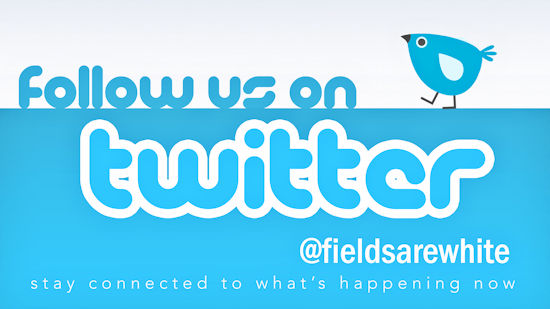 follow us @fieldsarewhite